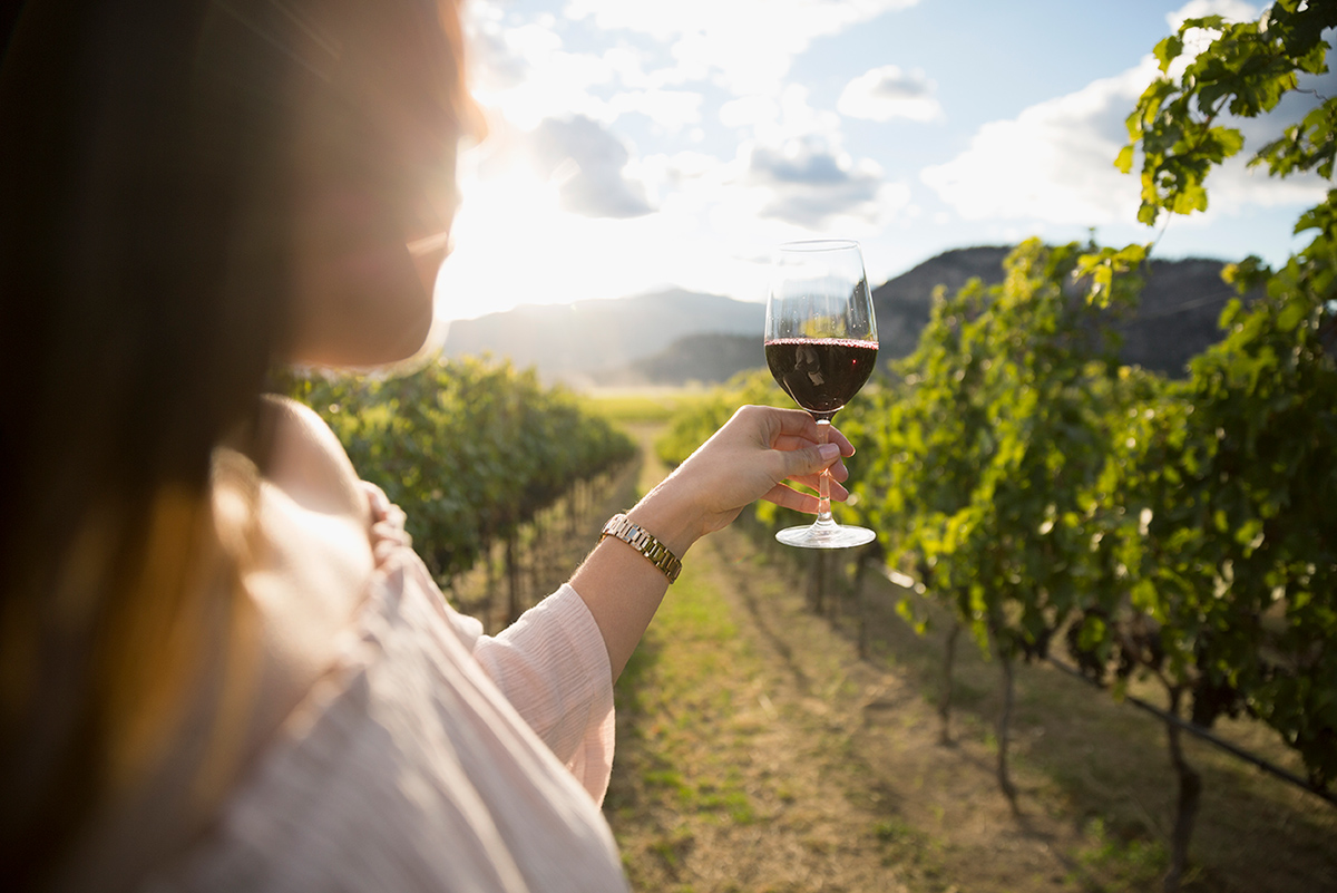 girl holding a glass of wine against the sun